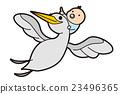 baby, stork, storks 23496365