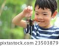 เด็ก,เด็กๆ,เด็กผู้ชาย 23503879