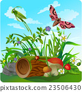 vector summer illustration  insect 2 23506430