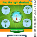 find right shadow ant 23506482