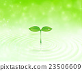 떡잎, 새싹, 싹 23506609