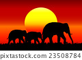Silhouette of elephant with sunset. 23508784