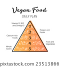 Food pyramid healthy vegan eating infographic 23513866
