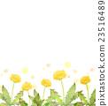 蒲公英 水彩畫 花朵 23516489