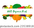 Organic fruits and vegetables template.  23538918