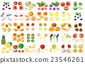 fruit, fruits, foodstuff 23546261