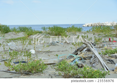 Image of environmental destruction 23556976