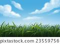 自然 背景 草地 23559756