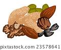 dried fruit 23578641