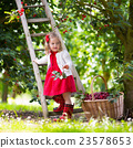 Little girl picking cherry 23578653