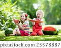 Kids eating watermelon in the garden 23578887