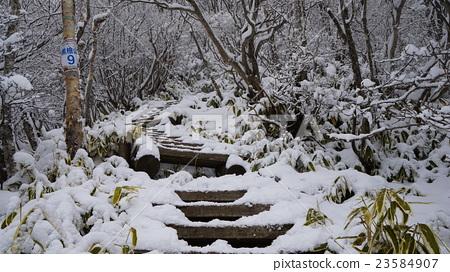 고마가 타케에서 블랙 히야마의 계단 23584907