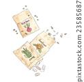 種子 物種 花園 23585687