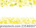银杏树秋天图象例证 23586007