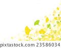 秋叶银杏树biloba图象例证 23586034