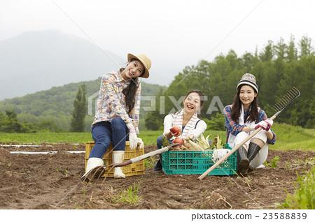 农业女孩画像 23588839