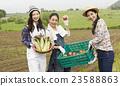 農業女孩畫像 23588863