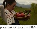 农业女孩画像 23588879