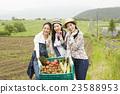 农业女孩画像 23588953