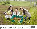农业女孩画像 23589008