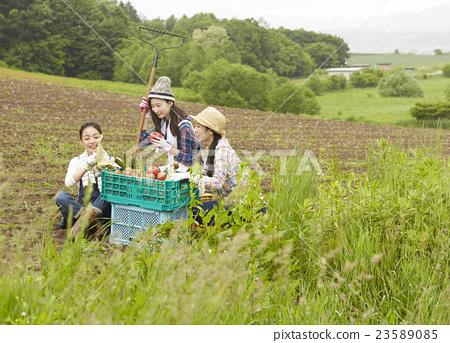 农业女孩画像 23589085
