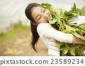 農業女孩畫像 23589234