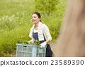 農業女孩畫像 23589390