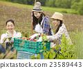 农业女孩画像 23589443