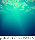 sea aquatic underwater 23591972