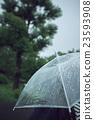 雨 23593908