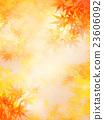 黄叶 秋叶 叶子 23606092