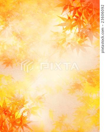 枫树 枫叶 红枫 23606092
