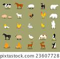 vector chicken sheep 23607728