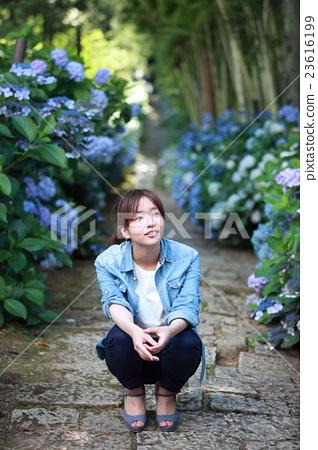 수국이 피어있는 돌층계의 참배 길에 웅크 리고있는 젊은 일본인 여성 23616199