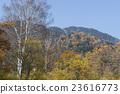landscape, scenery, scenic 23616773