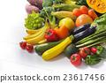 蔬菜 食品 原料 23617456