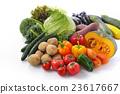 蔬菜组图像 23617667