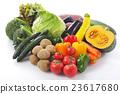 야채 집합 이미지 23617680