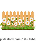 Vector Wooden Fence with Camomiles 23621664