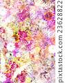 花朵 花 花卉 23628822