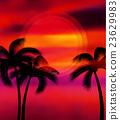 Vector summer vacation 23629983