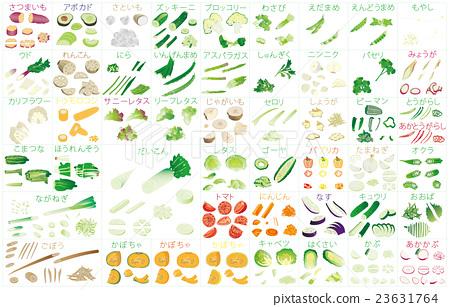 各種切蔬菜3幀名稱 23631764