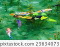 池塘 咸水湖 鲤鱼 23634073