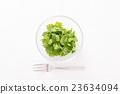 香菜 23634094