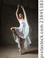 芭蕾舞女 芭蕾 舞 23645383
