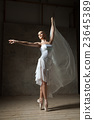 Elegant ballerina dancing in white costume and 23645389