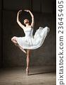 芭蕾舞女 裙子 女人 23645405