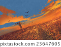 corn field with scarecrow and sunset sky 23647605