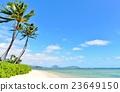 하와이 휴가 23649150