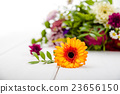 Fragrant flowers on wooden background 23656150